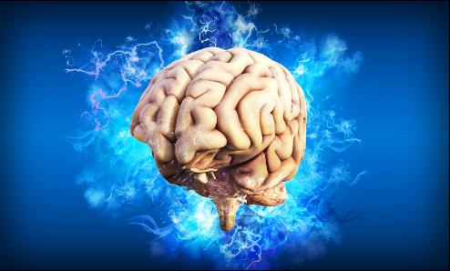 mozek v modrém poli